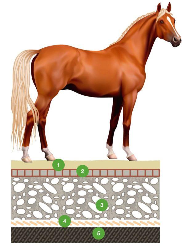 ECORASTER- zatravňovací dlažba- ECORASTER- využití pro koně