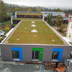 Nová zelená střecha ECOSEDUM PACK - osázená