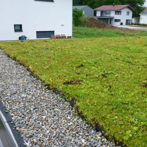Zelená střecha ECOSEDUM PACK se zásypem okrajů