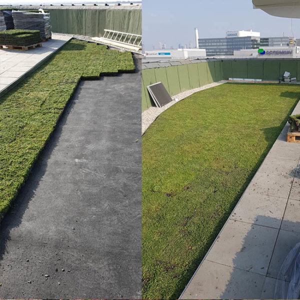 Zelená střecha ECOSEDUM PACK vytváří možnosti řezání