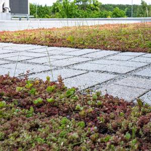 Zelená střecha ECOSEDUM PACK s ECORASTER BLOXX