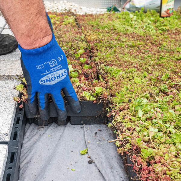Zelená střecha ECOSEDUM PACK dořez okrajů